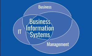 Business Information System: Meaning, Features and Components