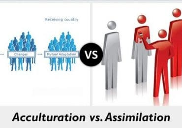 What are assimilation and acculturation?